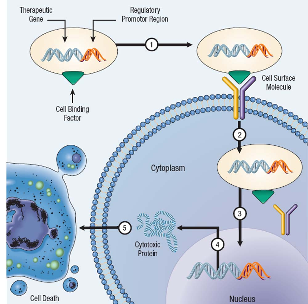 the use and benefits of the gene therapy